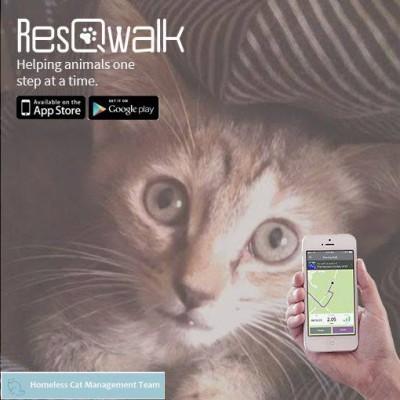 ResQwalk