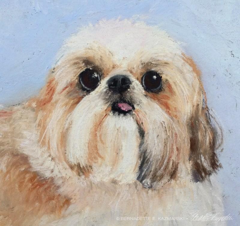 portrait of shi tzu