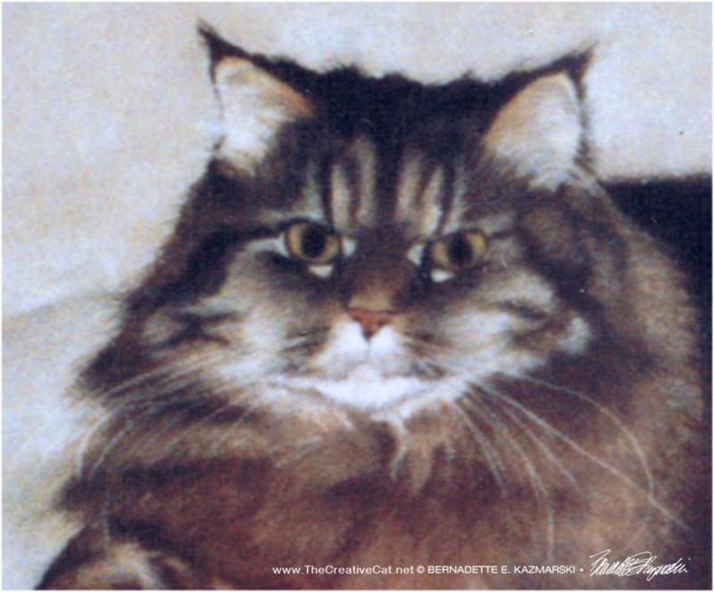 pastel portrait of Persian cat