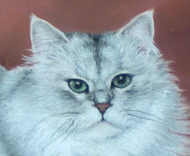 detail of pastel cat portrait