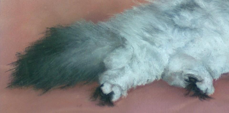 detail of pastel portrait of cat