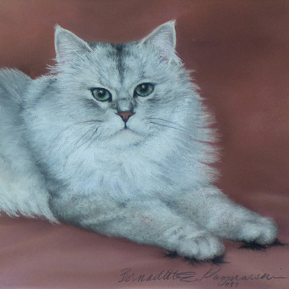 pastel portrait of chinchilla persian cat