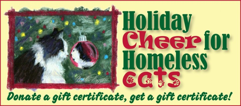 Holiday Cheer for Homeless Cats and Their Caretakers