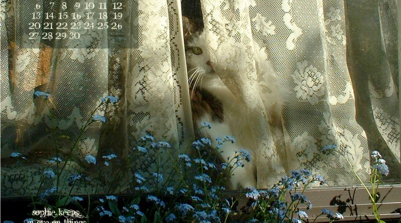 """""""Sophie Keeps an Eye on Things"""" 1280 x 1024 for square and laptop monotors desktop calendar wallpaper"""