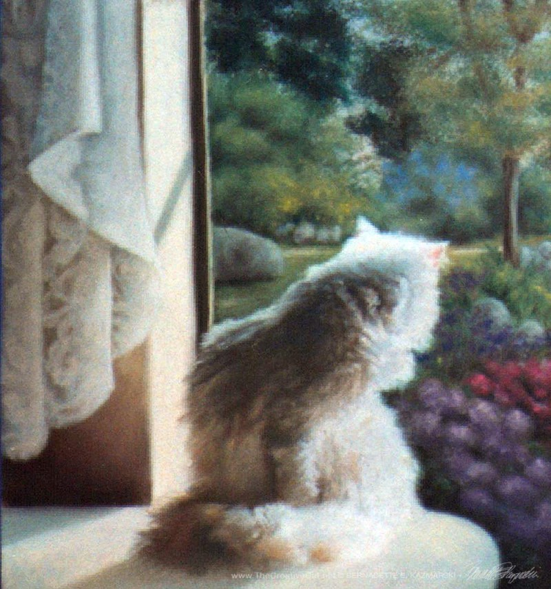 """Spring"" detail of cat and curtain; sorry for the poor resolution if you are seeing this 1000 pixels wide."