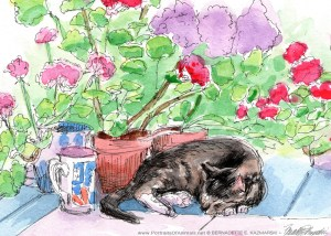 "Stanley With Geranium 5"" x 7"" card."