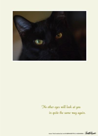 """Mr. Sunshine's Eyes"" sympathy card"
