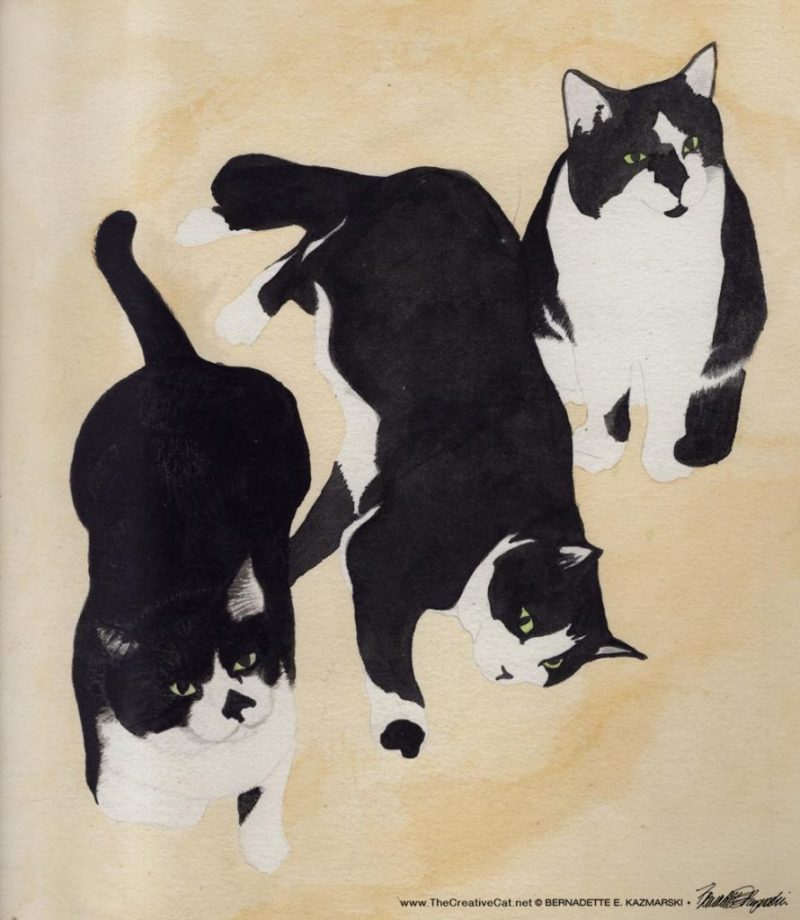 Three Black and White Cats, watercolor, 12 x 16 © Bernadette E. Kazmarski