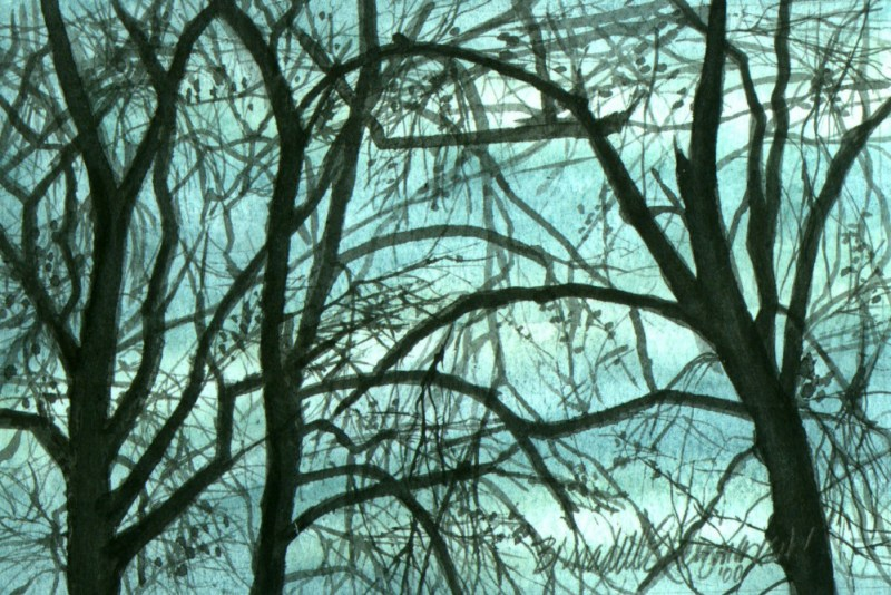 watercolor of bare trees