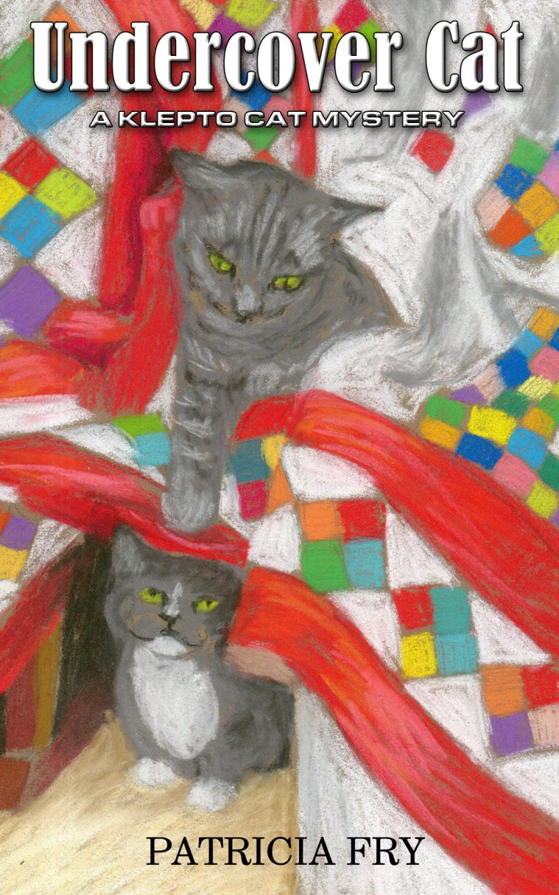 gray cats on colorful quit