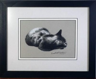 framed sketch of cat
