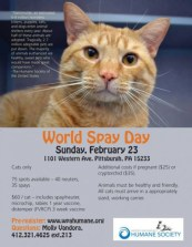 spay day clinic