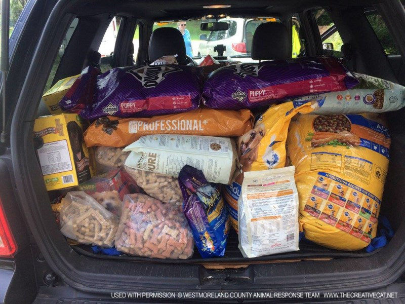 An SUV packed with food donations.