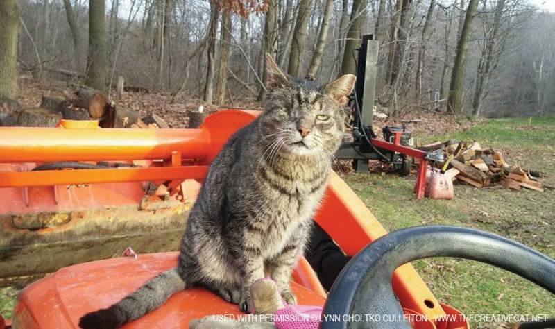 Willie manages the tractor.