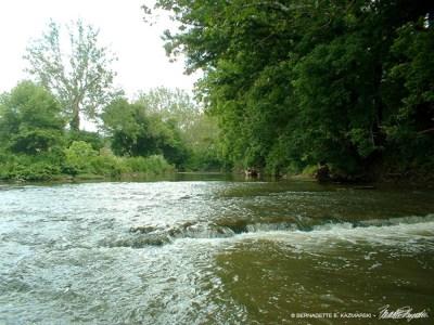 chartiers creek view