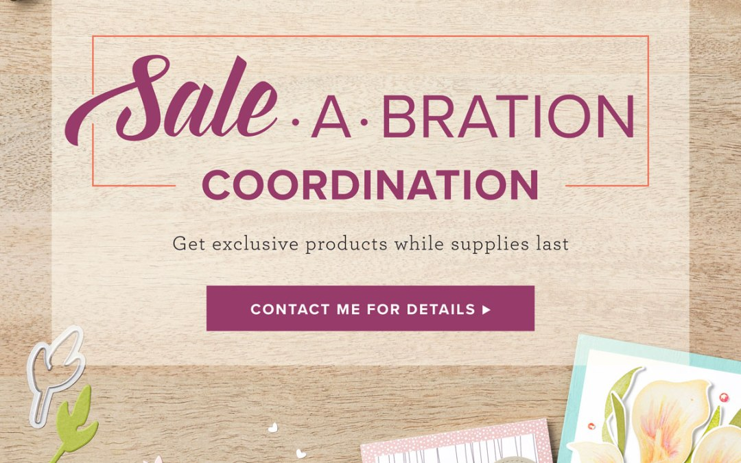 Sale-A-Bration Coordination Products are here!