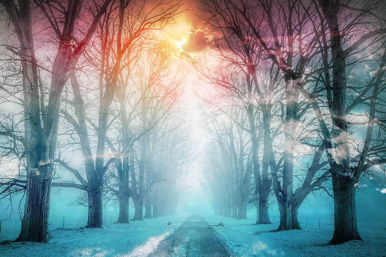 Wintery Road 02 - Stock Photo