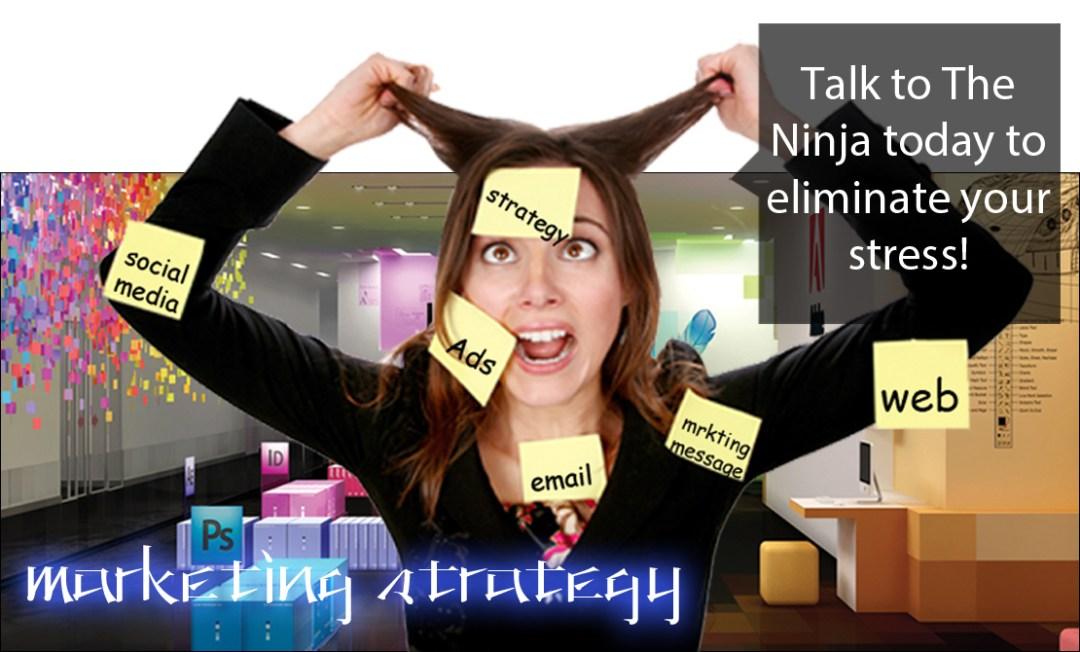 The Creative Ninja - Marketing Strategy