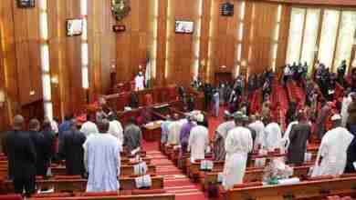 Nigerian-Senate-during-plenary