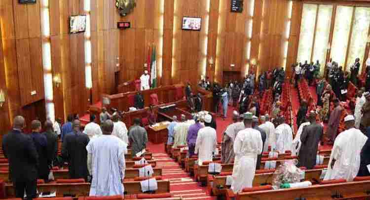 Nigerian-Senate-during-plenary