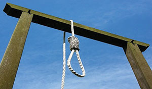 Noose-and-gallows-image (Credit: Ray Aallen K9 Manufacturing)