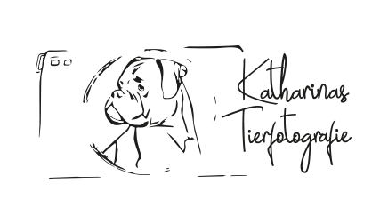 Katharinas Tierfotografie