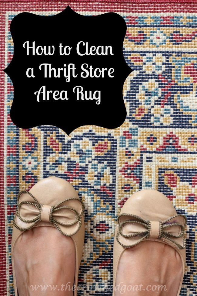 How-to-Clean-a-Thrift-Store-Area-Rug-The-Crowned-Goat-Pinnable How to Clean a Thrifted Area Rug DIY