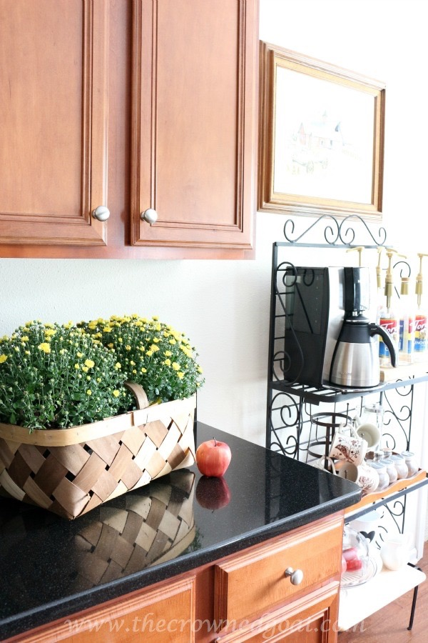 Fall Inspired Kitchen 100815-18