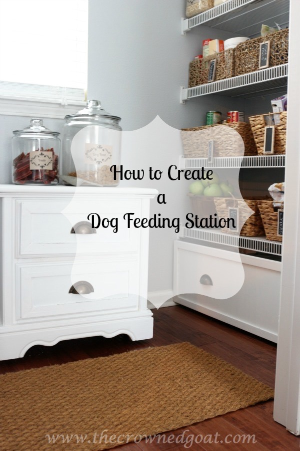 How-to-Create-a-Dog-Feeding-Station-Pinnable Creating a Dog Feeding Station From a Nightstand Uncategorized