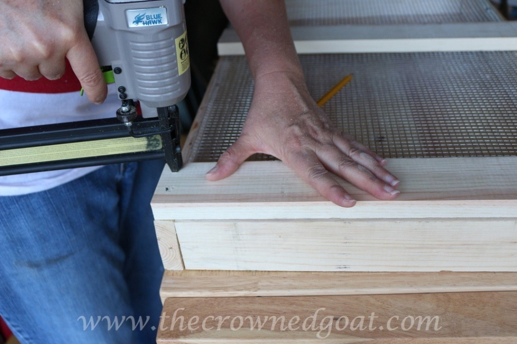 032816-10-1024x682 DIY Dutch Tulip Crate DIY Spring