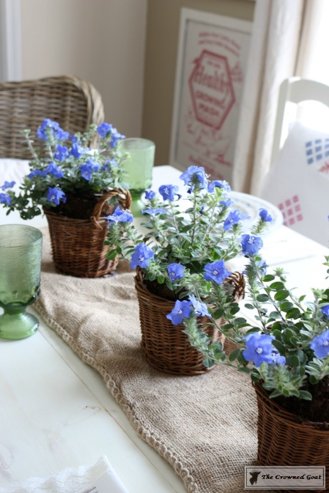 052416-5 Budget Friendly Decorating Tips for Summer Decorating