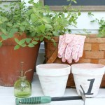 White Washing Terra Cotta Pots with Chalk Paint