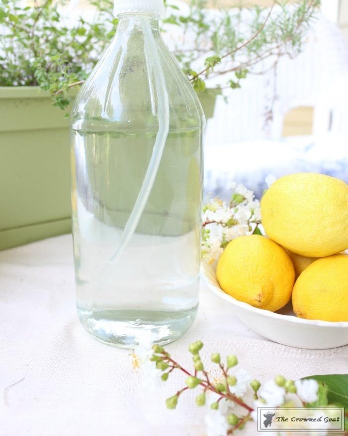 Lemongrass-and-Eucalyptus-Room-Freshener-8 Lemongrass and Eucalyptus Room Freshener DIY