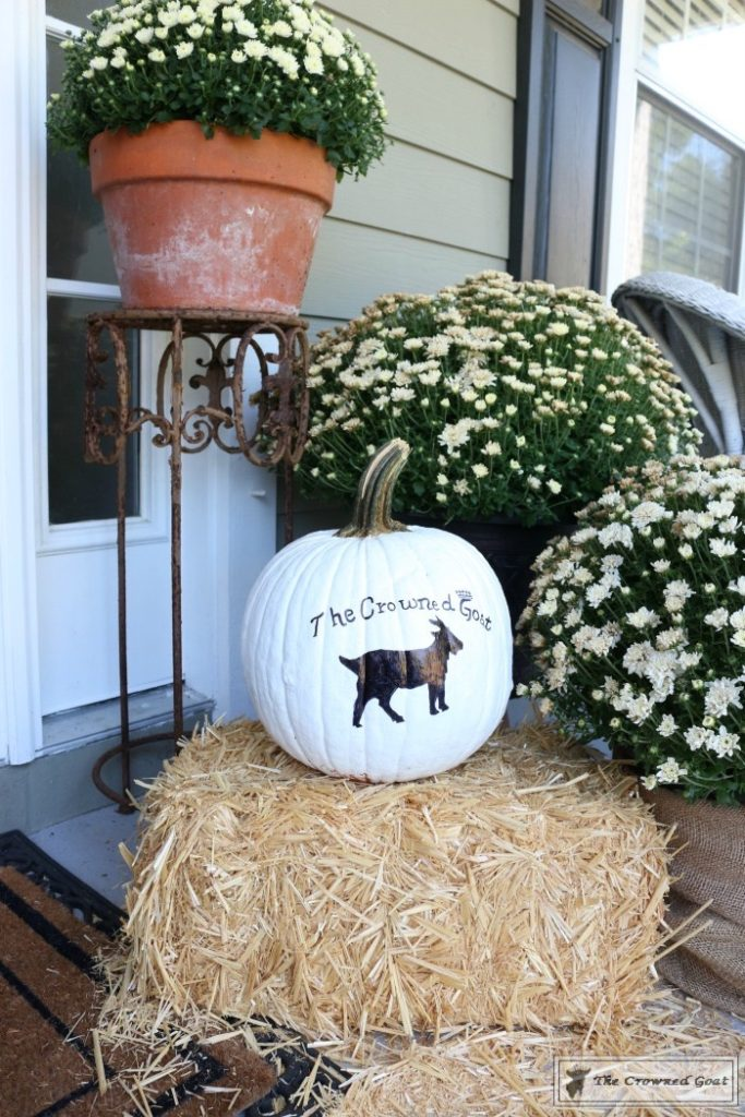 how-to-customize-a-painted-pumpkin-4