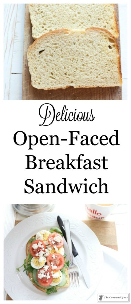 Open-Faced-Breakfast-Sandwich-1-443x1024 Delicious Open-Faced Breakfast Sandwich DIY