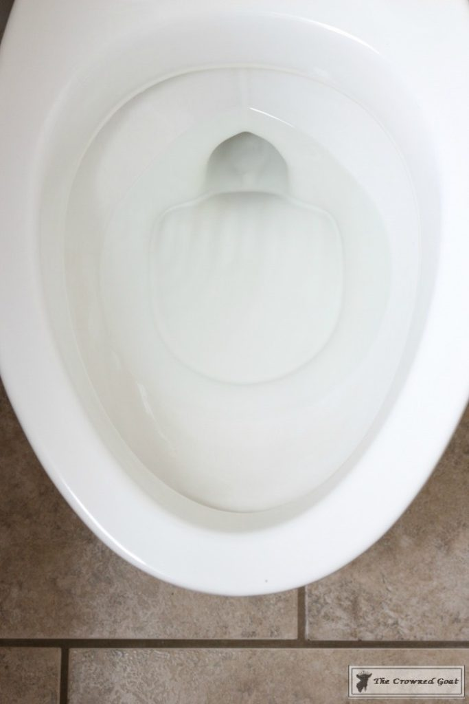 How-to-Get-Hard-Water-Rings-Out-of-the-Toilet-9-683x1024 The Best Toilet Cleaning Product Ever DIY