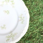 The Easiest Way to Make Moss Placemats