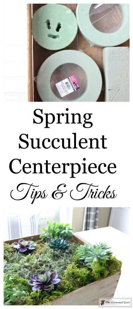Spring Succulent Centerpiece-1