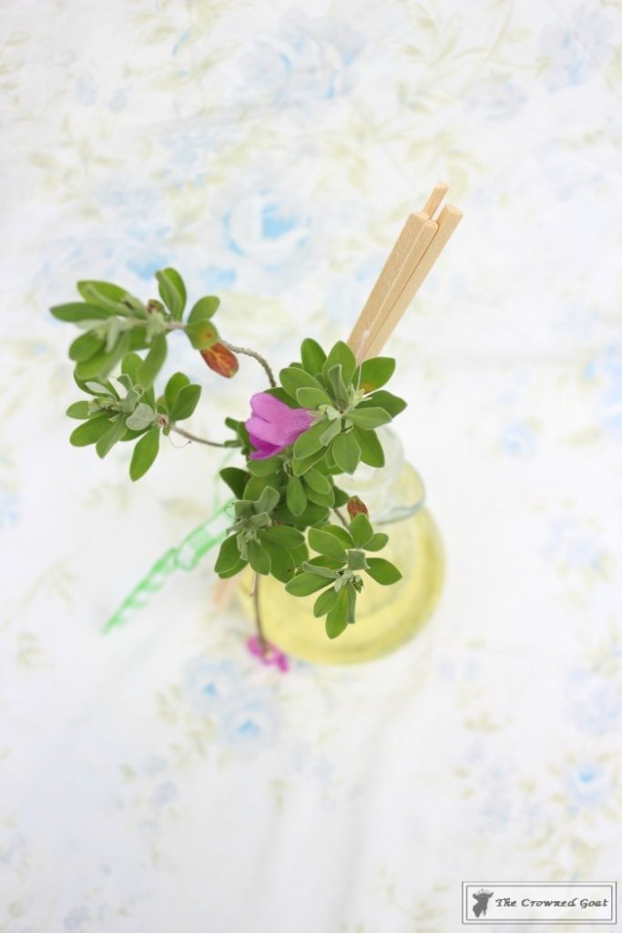 DIY Lemongrass Room Diffuser-10