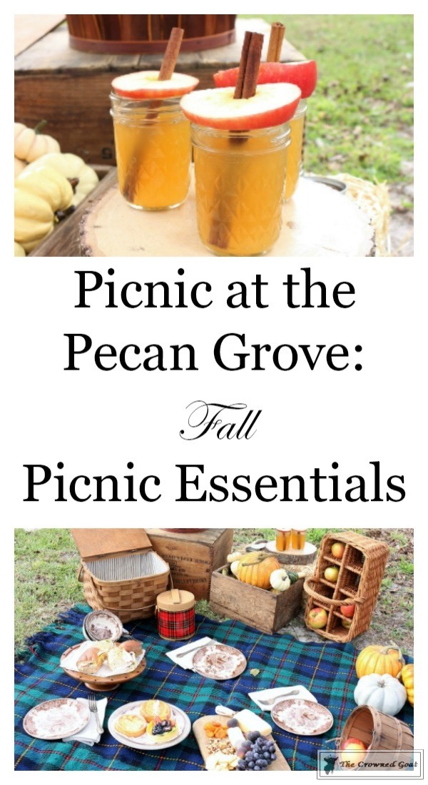 Fall-Picnic-at-the-Pecan-Grove-The-Crowned-Goat-6 Fall Picnic at the Pecan Grove Back to Basic Fall