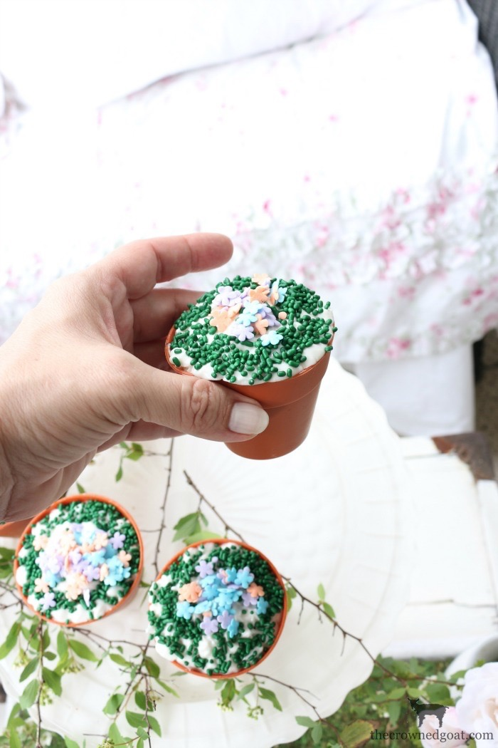 Flower-Pot-Cupcakes-The-Crowned-Goat-18 Spring Inspired Flower Pot Cupcakes Baking Spring
