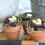 DIY Bird's Nest