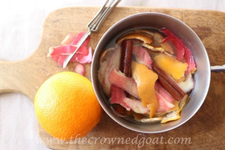 021916-10-10 Citrus Inspired Simmer Pot Recipes
