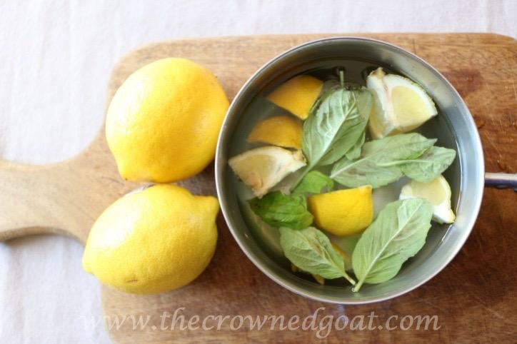 021916-3-10 Citrus Inspired Simmer Pot Recipes