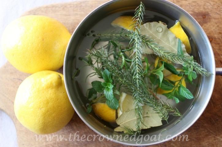 021916-4-10 Citrus Inspired Simmer Pot Recipes