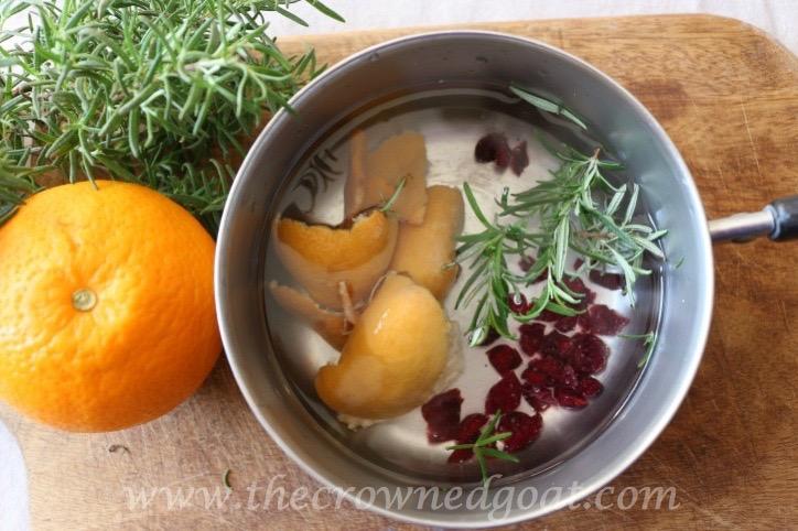 021916-7-10 Citrus Inspired Simmer Pot Recipes