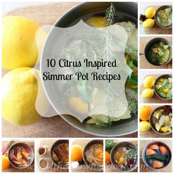 10 Citrus Inspired Simmer Pot Recipes