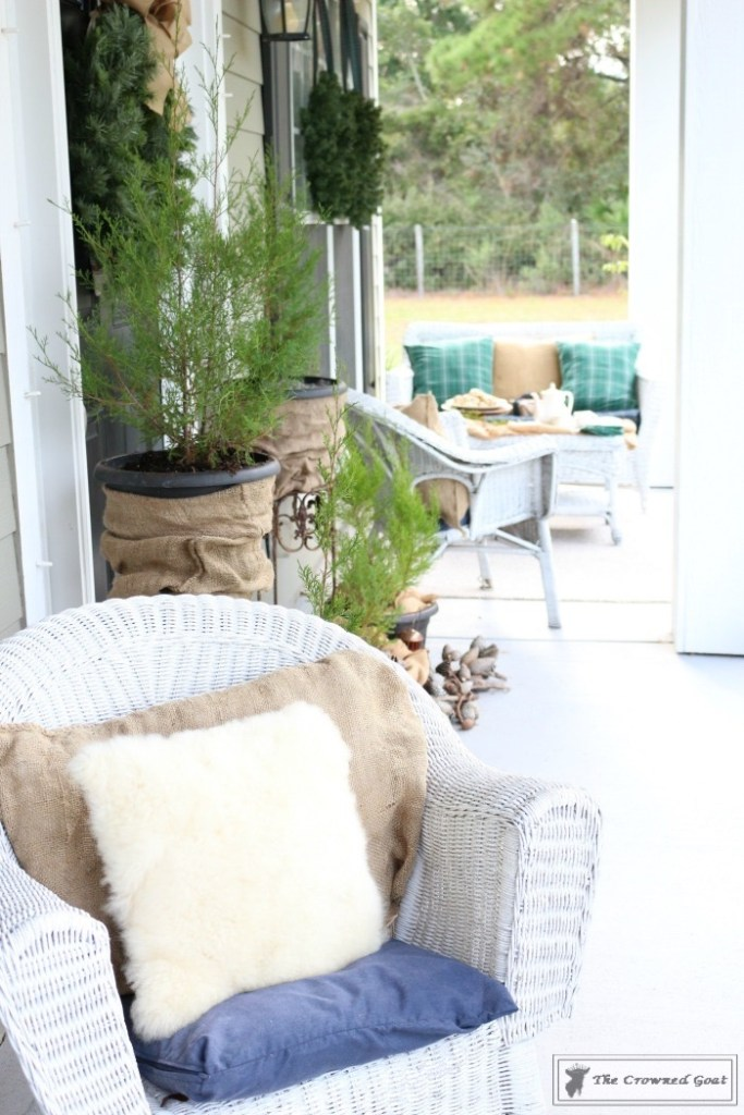 nature-inspired-christmas-front-porch-4
