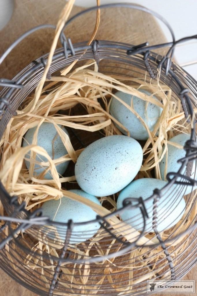 Easy DIY Robin Eggs-3