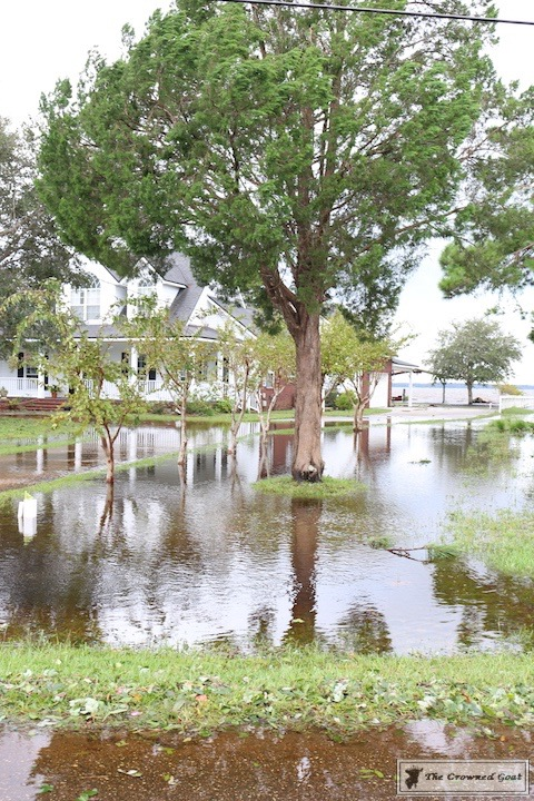 Thoughts on Hurricane Irma-7